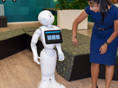 Meet our roving robots
