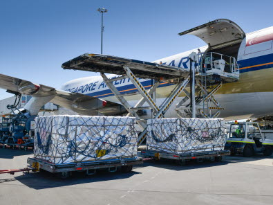 More cargo planes herald the key export season for South Island